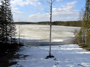 Kumpu lomamökki Petäjävesi